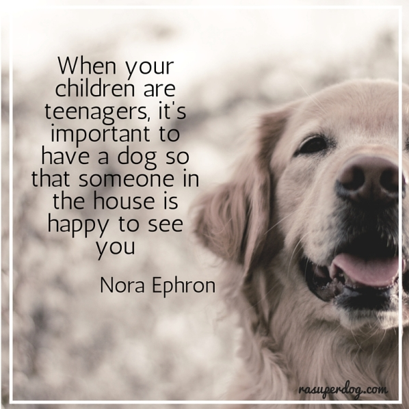 its imprtant to have a dog