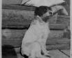 Portrait Dog 1917